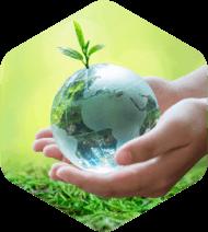 מדיניות איכות הסביבה