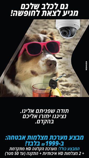 גם לכלב שלך מגיע לצאת לחופשה